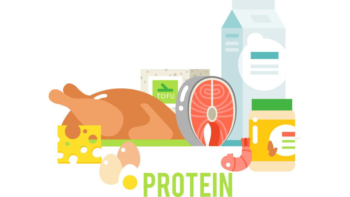 diferentes tipos de proteínas