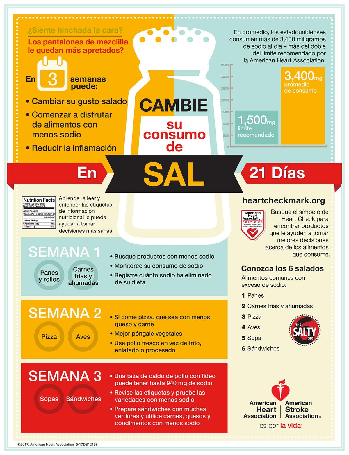 Infografía del Intercambio de sodio, español