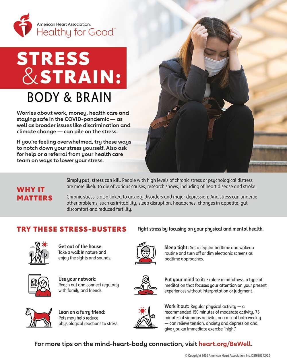 Infografía sobre estrés y esfuerzo, cuerpo y cerebro