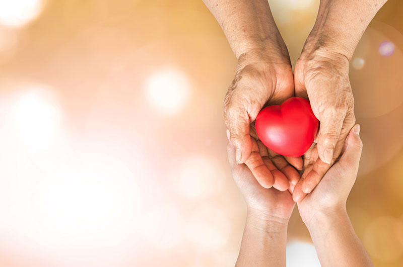 comforting hands holding heart shape