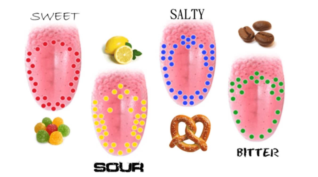 How Taste Works
