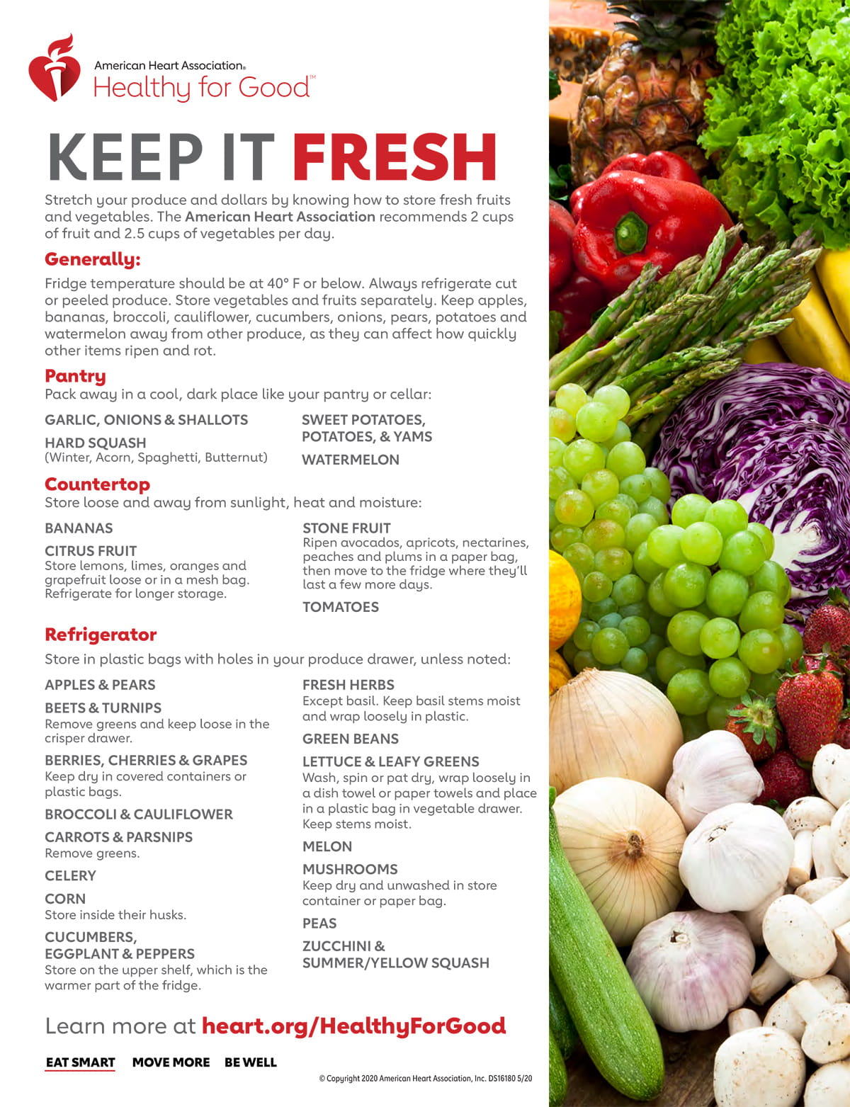 Keep it Fresh Produce Storage Infographic