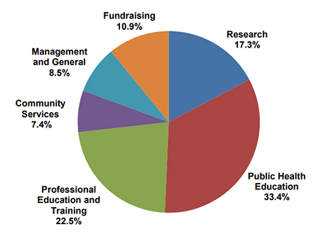 Fiscal Year 2019 through 2020 expenses pie chart
