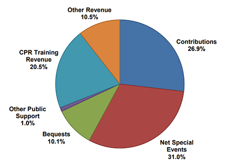 fiscal year 2019 through 2020 public expenses and other revenue pie chart