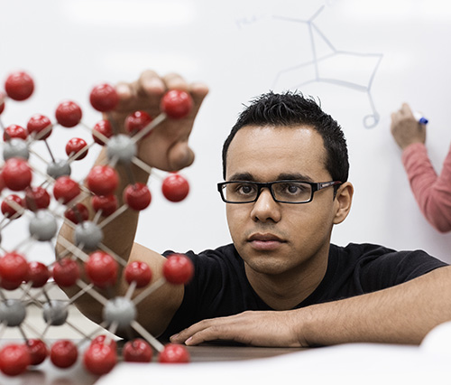 Young college student building a model cell structure