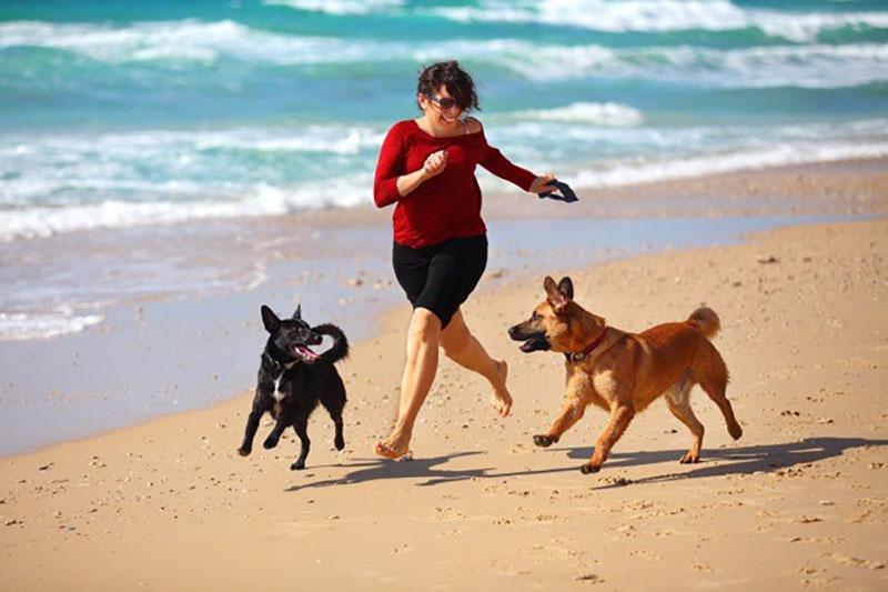perros mujer corriendo por la playa