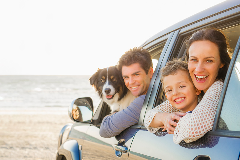 family and dog in car at the beach