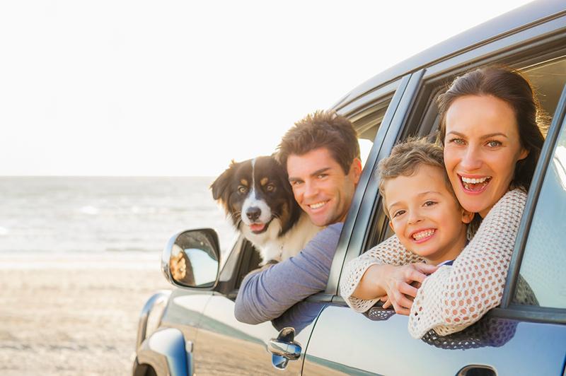 Una familia y su perro en automóvil en la playa
