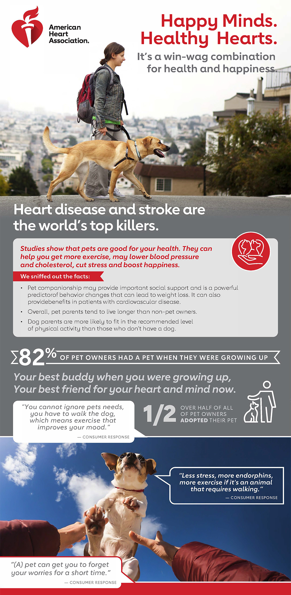 Infografía de Happy Minds Healthy Hearts