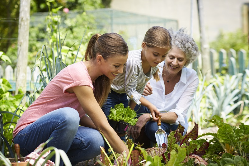 Three generation females gardening together in yard