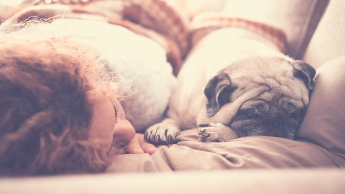 mujer durmiendo la siesta con un perro